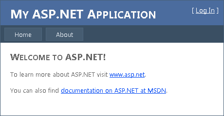 Empty ASP.NET application