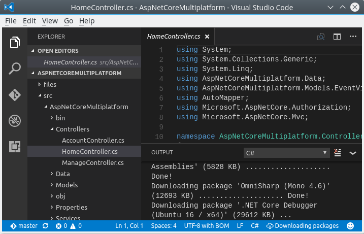 Visual Studio Code: Downloading packages