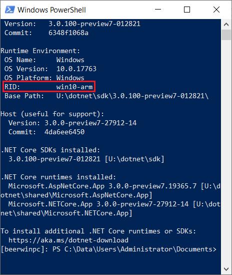 dotnet --info output